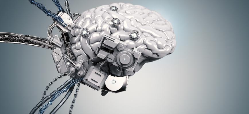 De la intuición al algoritmo: sacar partido de la inteligencia de las máquinas