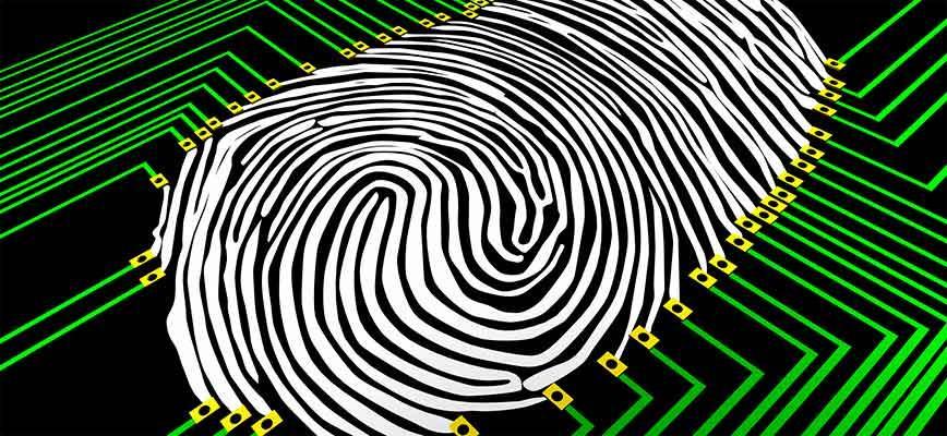 La revolución analítica: el Big Data en la práctica
