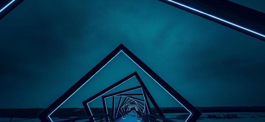 La franquicia: visión estratégica y tendencias de futuro