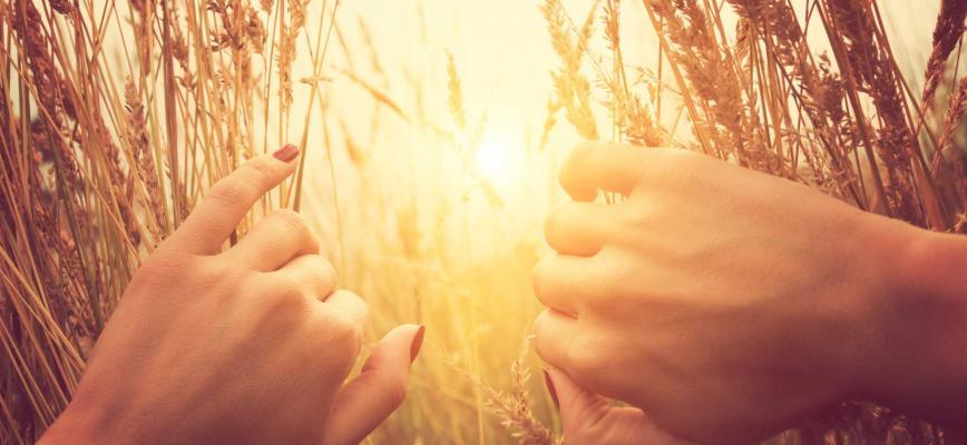 El arte de estar presente - Cómo la práctica de 'mindfulness' puede recuperar el entusiasmo en las organizaciones