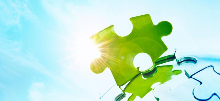 Negocios sostenibles al amparo de la nueva economía circular