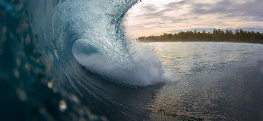 Tsunami digital: Cuatro transformaciones todavía desconocidas