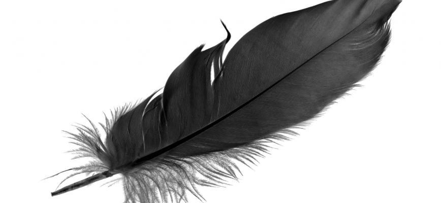 'Re-think' turbulencias, cisnes negros, cambio y disrupción. ¿listos para repensarlo todo?