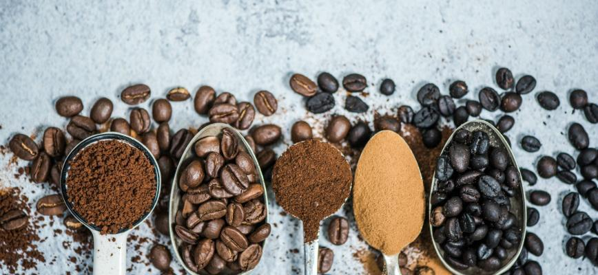 El hijo de bob marley levanta un imperio de café