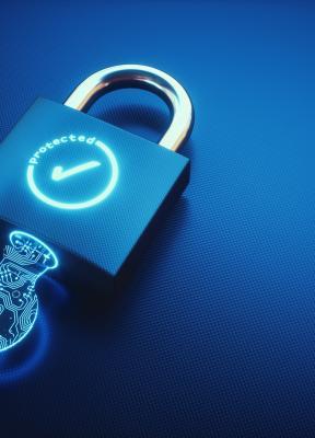 El problema de la ciberseguridad: Si no puedes vencerles únete a ellos