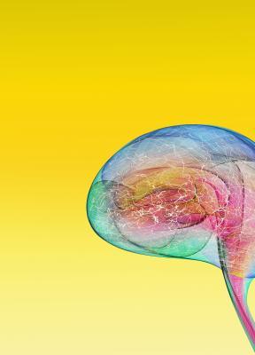 Neurociencia aplicada a la eficacia publicitaria: ¿aliadas perfectas?