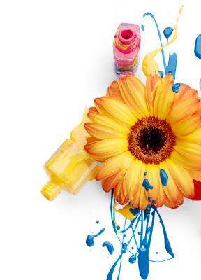 Arte, diseño y márketing: una mezcla  inseparable