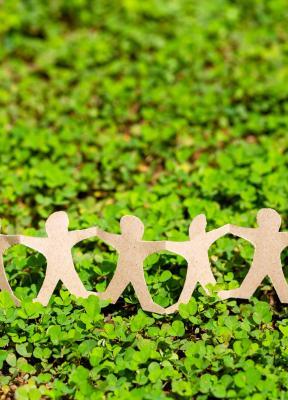 Tribuna: El propósito debería aparecer en el adn de la organización