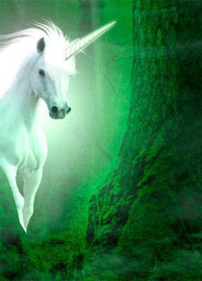 """Unicornios latinoamericanos. Visión global y gestión """"tropicalizada"""""""