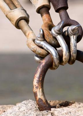 La cadena de suministro como motor de crecimiento