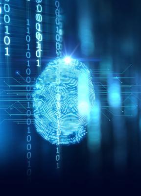La gestión de la Inteligencia Artificial