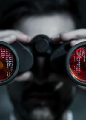 La gestión de la ciberseguridad como estrategia: el peligro de la vulnerabilidad y cómo mitigarla