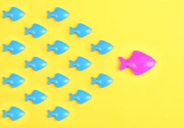 ¿Por qué la gente cree o (no) en sus líderes?