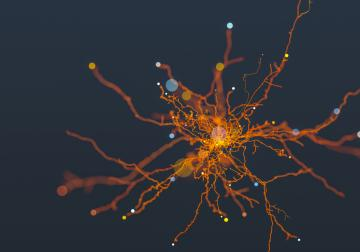 El increíble potencial de la inteligencia artificial aplicada al mundo de los n...