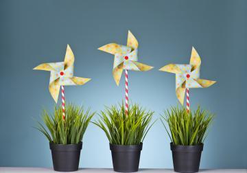 El liderazgo en la empresa sin jerarquías