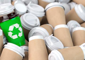 'Packaging' sostenible: Hacia envases que no dejen huella