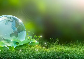 Sostenibilidad en la empresa, la única estrategia posible