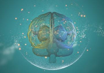 Decálogo de la psicología del 'marketing'