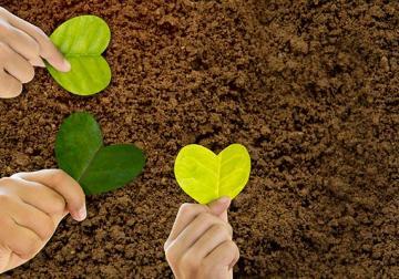 La empresa del mañana será sostenible o no será