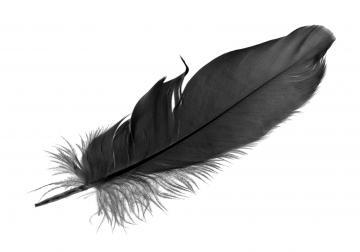 'Re-think'! turbulencias, cisnes negros, cambio y disrupción. ¿listos para rep...