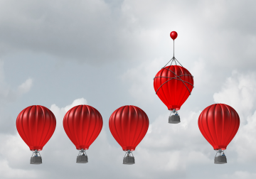 El crecimiento profesional derivado de las competencias transversales. La capaci...